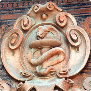 змееносец рожденные под знаком змееносца