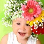 Типы поведения, темперамент и характер вашего ребёнка