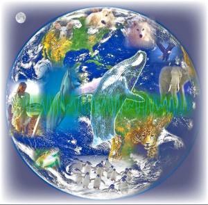 Работа по уменьшению негативных последствий от сейсмической активности планеты
