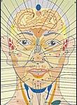 Оценка состояния здоровья по лицу и морщинам