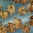 Уникальный рецепт молодости: полное обновление организма проростками грецкого ореха