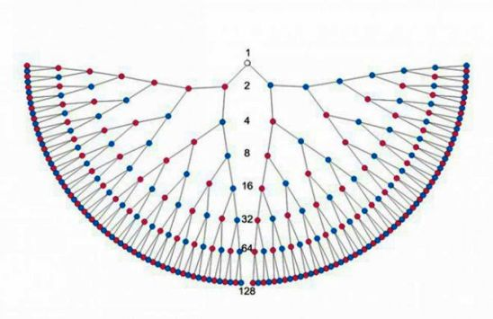 Схема Рода. 7 поколений, которые есть за спиной каждого из нас, всего 256 человек