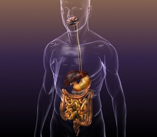 улучшить пищеварение