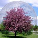 Шар «Биосфера» в одном из парков Монреаля