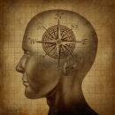 Шестое чувство: как мозг реагирует на магнитное поле