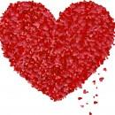 Любовь не имеет правил, любовь просто существует