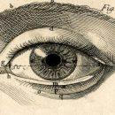 Почему люди боятся смотреть друг другу в глаза