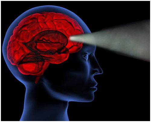 Основные изученные ритмы головного мозга