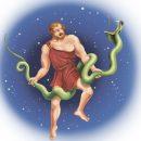 гороскоп для Змееносца на 2017 год Петуха