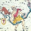 Змееносец горосоп