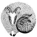 козерог гороскоп на 2017 год