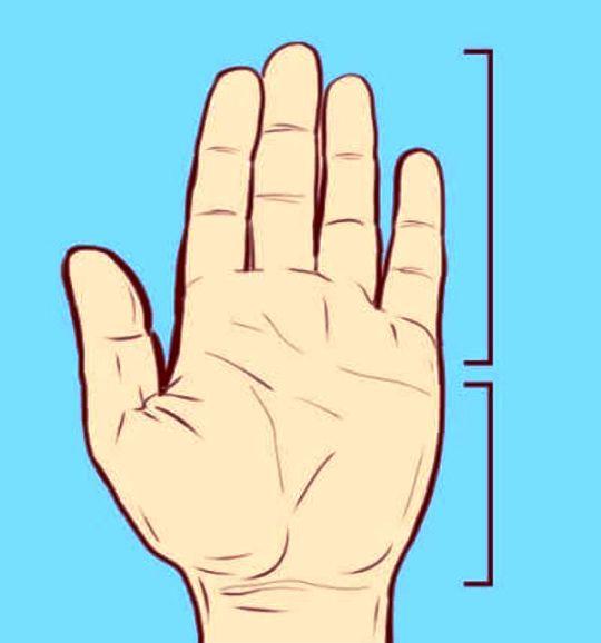 Земля — короткие пальцы и маленькие квадратные ладони