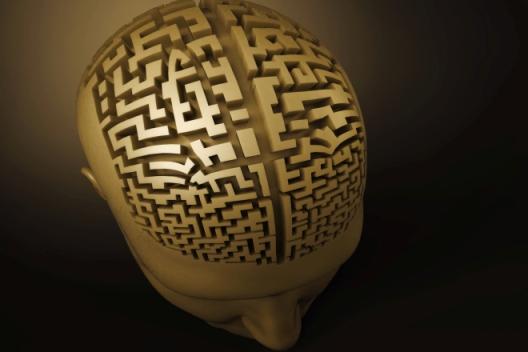 Тренировка памяти «перепрошивает» мозг за 1.5 месяца