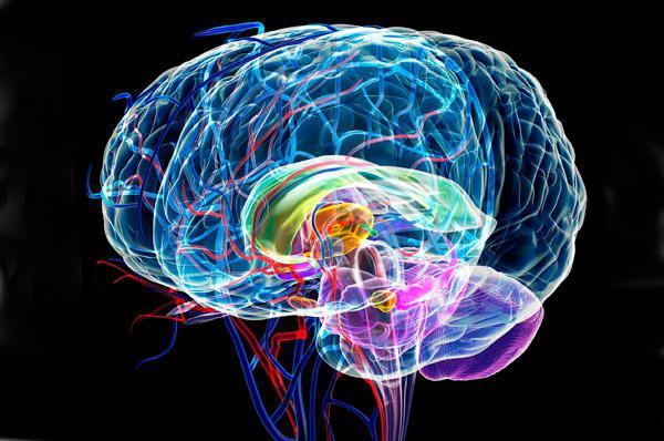 Быстрое выздоровление с помощью активации Сигнатурной Клетки и Шишковидной Железы