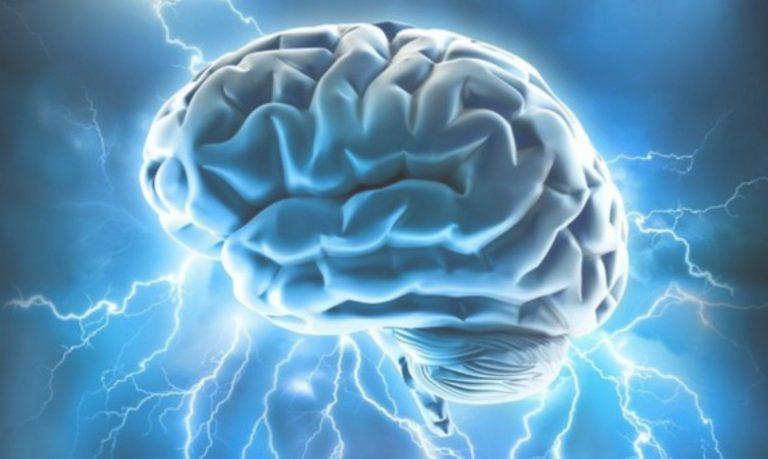 О том, как программируется наш мозг