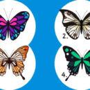Тест: выберите бабочку и узнаете тайны своей души