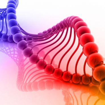 Ваша ДНКа издает прекрасную музыку, вы знали об этом...!