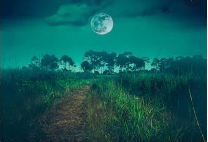 луна календарь 2021